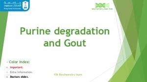 Purine degradation and Gout