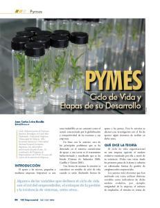 PYMES. Ciclo de Vida y Etapas de su Desarrollo. Pymes