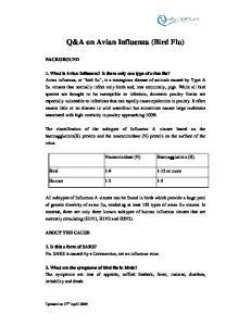 Q&A on Avian Influenza (Bird Flu)
