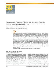 Quantitative Grading of Tissue and Nuclei in Prostate Cancer for Prognosis Prediction