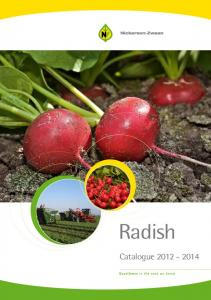 Radish Catalogue