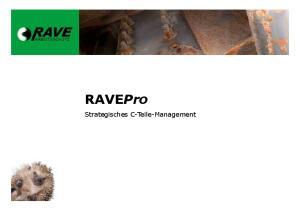 RAVEPro. Strategisches C-Teile-Management