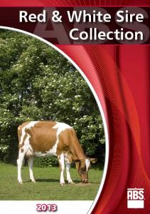 Red & White Sire Collection