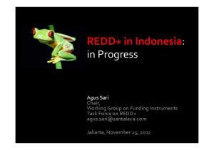 REDD+ in Indonesia: in Progress