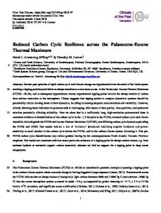 Reduced Carbon Cycle Resilience across the Palaeocene-Eocene Thermal Maximum