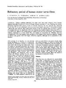Refractory period of human motor nerve fibres