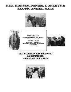Reg. HORSEs, Ponies, Donkeys & Exotic Animal sale