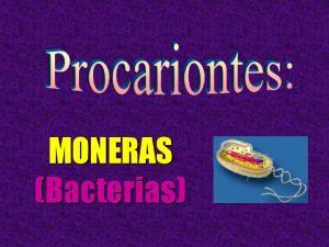 Reino MONERAS. Eubacterias. (Cianobacterias)
