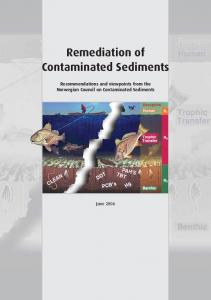 Remediation of Contaminated Sediments. Recommendations and viewpoints from the Norwegian Council on Contaminated Sediments