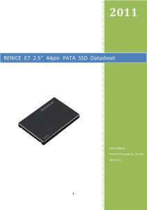 RENICE E pin PATA SSD Datasheet