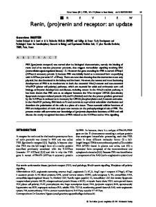 Renin, (pro)renin and receptor: an update