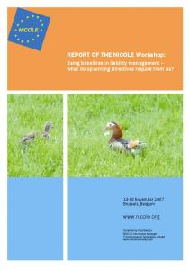 REPORT OF THE NICOLE Workshop: