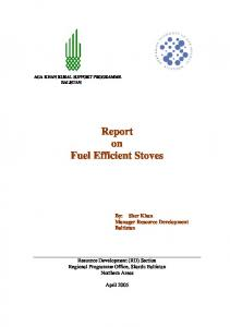 Report on Fuel Efficient Stoves