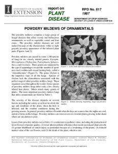 report on PLANT DISEASE