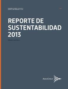 reporte de sustentabilidad 2013