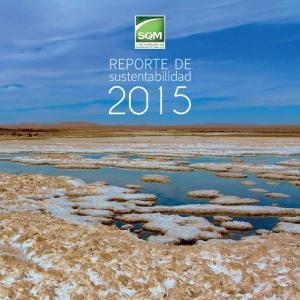 REPORTE DE. sustentabilidad