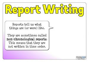 Reports tell us what things are (or were) like