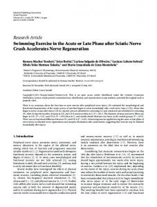 Research Article Swimming Exercise in the Acute or Late Phase after Sciatic Nerve Crush Accelerates Nerve Regeneration