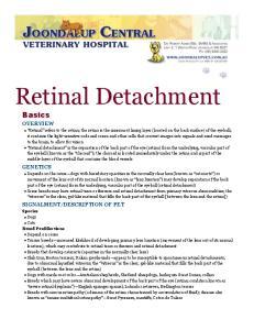 Retinal Detachment Basics