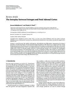Review Article The Interplay between Estrogen and Fetal Adrenal Cortex
