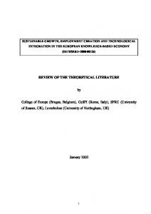 REVIEW OF THE THEORETICAL LITERATURE