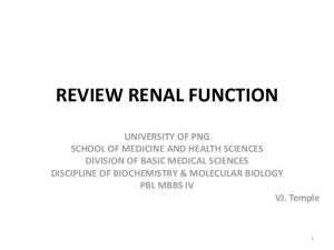 REVIEW RENAL FUNCTION