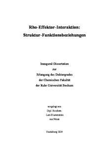 Rho-Effektor-Interaktion: Struktur-Funktionsbeziehungen