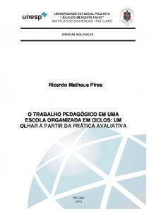 Ricardo Matheus Pires