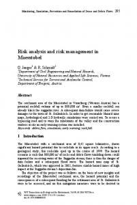 Risk analysis and risk management in Maesstobel