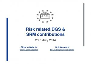 Risk related DGS & SRM contributions