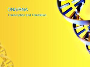 RNA. Transcription and Translation