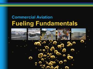 Robert Freeman Los Angeles World Airports Chris Straub, PE Argus Consulting, Inc