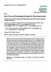 Root Traits and Phenotyping Strategies for Plant Improvement