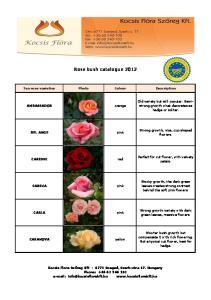 Rose bush catalogue 2012