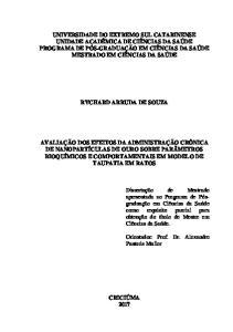 RYCHARD ARRUDA DE SOUZA