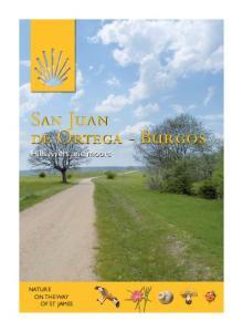 San Juan de Ortega - Burgos