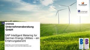 SAP Intelligent Metering for German Energy Utilities ein Erfahrungsbericht