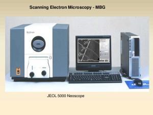 Scanning Electron Microscopy - MBG. JEOL 5000 Neoscope