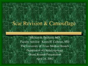 Scar Revision & Camouflage