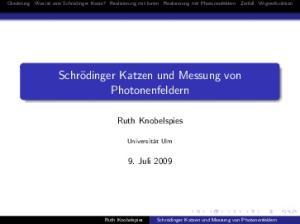 Schrödinger Katzen und Messung von Photonenfeldern