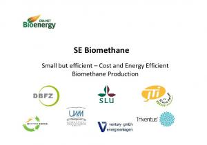 SE Biomethane. Small but efficient Cost and Energy Efficient Biomethane Production