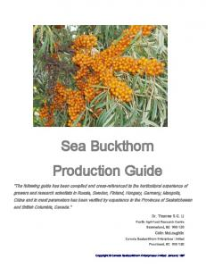 Sea Buckthorn Production Guide