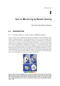 Sea Ice Monitoring by Remote Sensing
