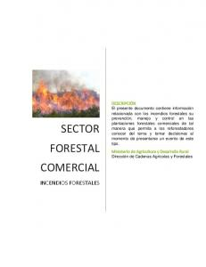 SECTOR FORESTAL COMERCIAL