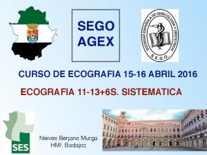 SEGO AGEX CURSO DE ECOGRAFIA ABRIL 2016 ECOGRAFIA S. SISTEMATICA