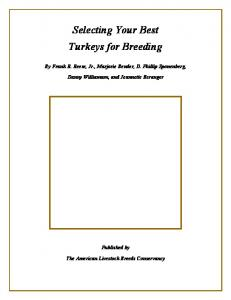 Selecting Your Best Turkeys for Breeding