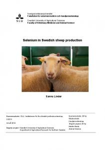 Selenium in Swedish sheep production