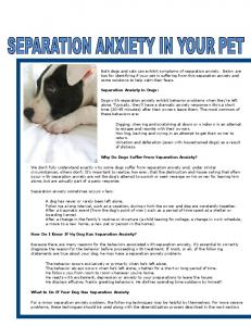 Separation Anxiety in Dogs: Why Do Dogs Suffer From Separation Anxiety?
