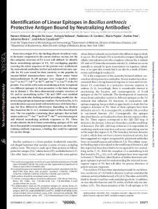 SEPTEMBER 11, 2009 VOLUME 284 NUMBER 37 JOURNAL OF BIOLOGICAL CHEMISTRY 25077