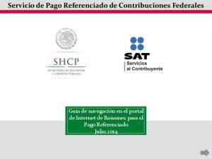 Servicio de Pago Referenciado de Contribuciones Federales